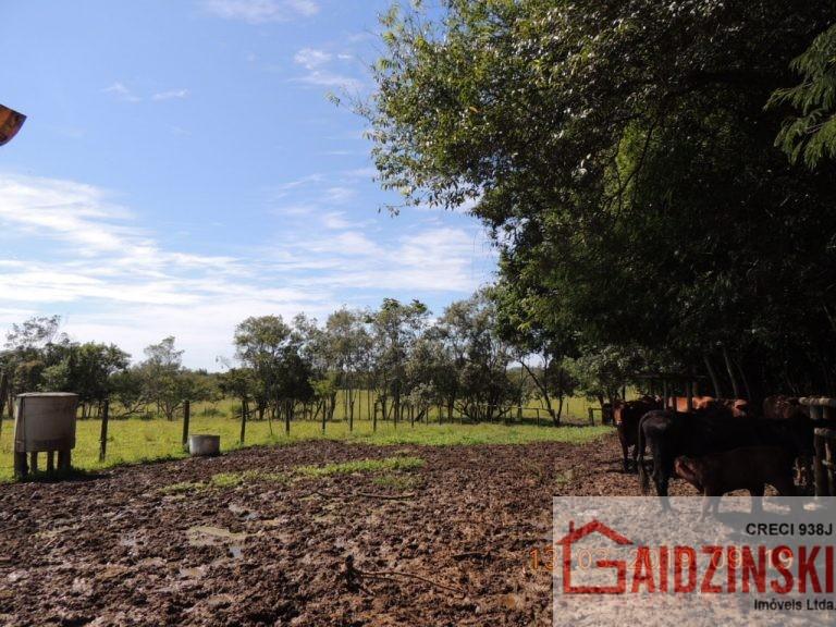 Terreno – Bairro Vila Nova